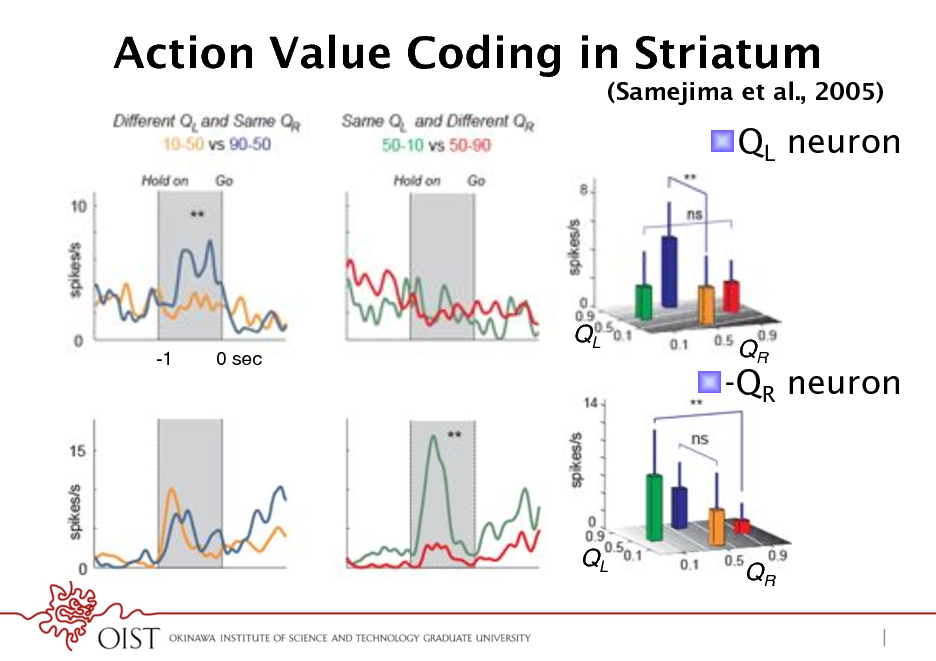 Slide: Action Value Coding in Striatum (Samejima et al., 2005)  ! QL neuron  -1  0 sec !  QL !  ! -QR neuron  QR !  QL !  QR !