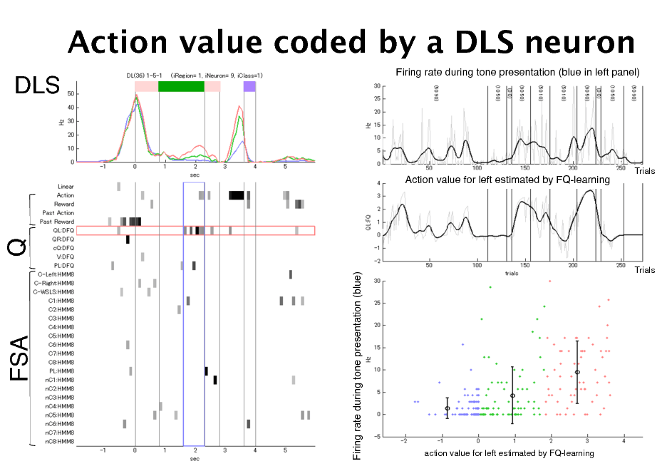 Slide: Action value coded by a DLS neuron DLS! Firing rate during tone presentation (blue in left panel)!  Action value for left estimated by FQ-learning!  Trials!  Q!  Firing rate during tone presentation (blue)!  Trials!  FSA!  action value for left estimated by FQ-learning!