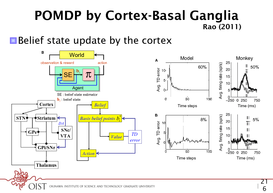 Slide: POMDP by Cortex-Basal Ganglia Decision making under uncertainty  Rao (2011) Rao  ! Belief state update by the cortex B  (s,a,s)  World action  Rao  SE SE  bt  Avg. TD error  60%  Avg. firing rate (sp/s)  observation & reward  A  Model  Monkey 50%  Action a  Decision makin  nt  Agent SE : belief state estimator bt : belief state  Cortex  Belief  t the space of beliefs ate vector is a prob1 nsional (number of describing the feedforward transformation of the input, M is the GPi/SNr es). This makes the matrix of recurrent synaptic weights, and g1 is a dendritic ltering Action ult. In fact, nding function. has been proved to The above differential equation can be rewritten in discrete nite-horizon case is Thalamus form as: 1987). However, one of which work | Suggested mapping of elements of the model to components FIGURE 3 well v t (i ) f (ot ) g M (i , j )v t 1( j ) (4) o a popular class of j of the cortex-basal ganglia network. STN, subthalamic nucleus; GPe, globus ed POMDP solvers pallidus, external segment; GPi, Globus pallidus, internal segment; SNc,  GPe  SNc/ TD VTA where v denotes the vector of output ring rates, o denotes the Value error input observation vector, f is a potentially non-linear function  Avg. TD error  b  Avg. firing rate (sp/s)  ecutes an action a in the e s according to the STN ervation o of the new der to solve the POMDP  problem, the animal maintains a belief bt which is a probability distribution over states of the world. This belief is computed iteratively using Bayesian inference * Striatum Basis for the points step is provided by by the belief state estimator SE. An actionbeliefcurrent time i DA the learned policy , which maps belief states to actions.  We model the task using a POMDP as follow Time steps Time (ms) underlying hidden states representing the two possi coherent motion (leftward or rightward). In each t B 8% menter chooses one of these hidden states5% (either le ward) and provides the animal with observations state in the form of an image sequence of random do coherence. Note that the hidden state remains the sa of the trial. Using only the sequence of observed im the animal must choose one of the following actio Time steps Time (ms) more time step (to reduce uncertainty), make a left FIGURE 16 | Reward predictionchoice dopamine responses in the ment (indicating error and of leftward motion), or m random dots task. (A) The plot on the left shows the temporal evolution of eye movement (indicating choice of rightward mo reward prediction (TD) error in the model, averaged over trials with Easy motion coherence (coherence = 60%). The dotted line shows the average We use the notation SL to represent the21 state reaction time. The plot on the right shows the average ring rate of dopamine neuronsleftward motion and random dots task at 50% motion 6 to in SNc in a monkey performing the S to represent rightward