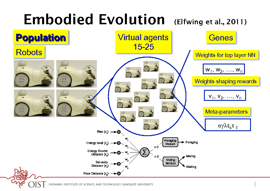 Slide: Embodied Evolution Population Robots Virtual agents 15-25  13  (Elfwing et al., 2011)  Genes Weights for top layer NN  w1, w2, , wn Weights shaping rewards  v1, v2, , vn Meta-parameters (a)  k 0  (b)
