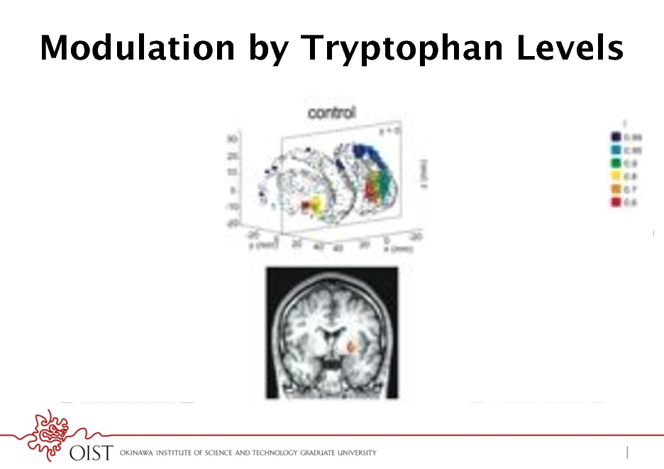 Slide: Modulation by Tryptophan Levels