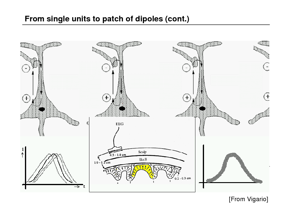 Slide: From single units to patch of dipoles (cont.)  [From Vigario]