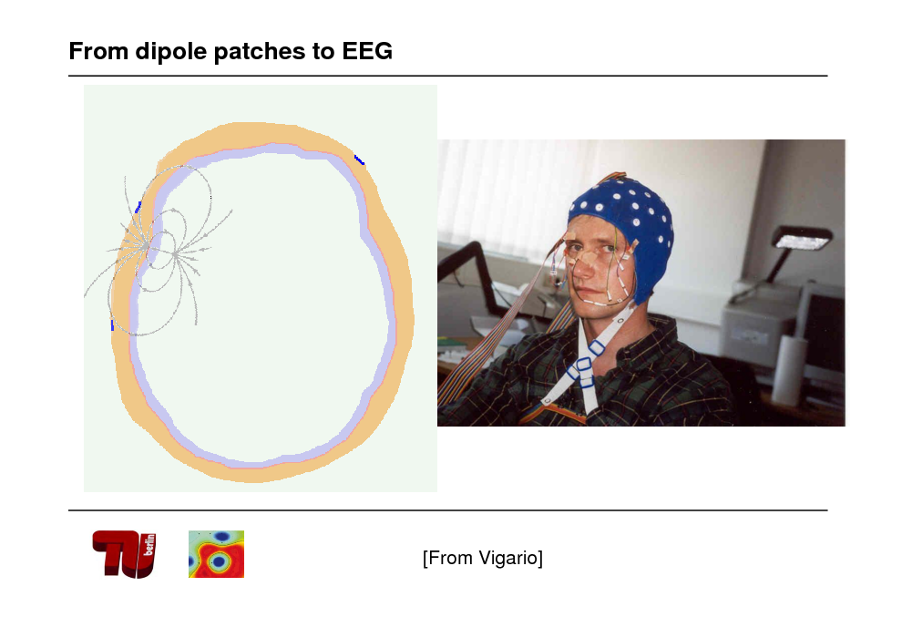 Slide: From dipole patches to EEG  [From Vigario]