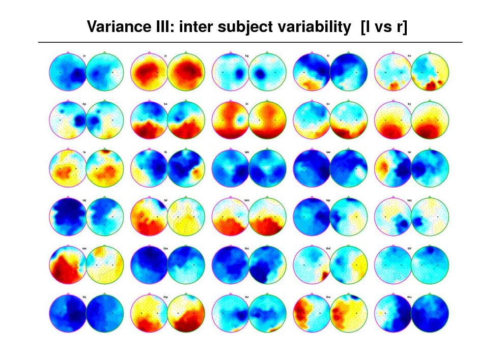 Slide: Variance III: inter subject variability [l vs r]