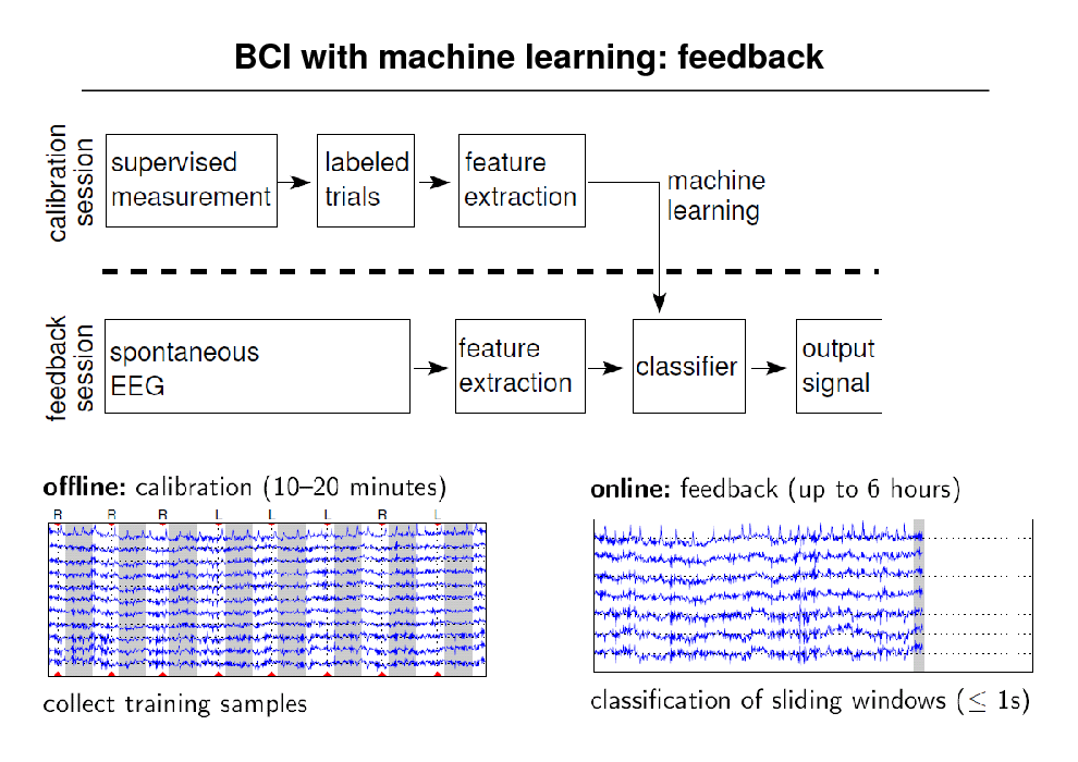 Slide: BCI with machine learning: feedback