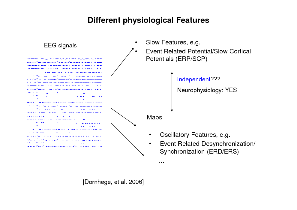 Slide: Different physiological Features EEG signals     Slow Features, e.g. Event Related Potential/Slow Cortical Potentials (ERP/SCP) Independent??? Neurophysiology: YES  Maps     Oscillatory Features, e.g. Event Related Desynchronization/ Synchronization (ERD/ERS)   [Dornhege, et al. 2006]