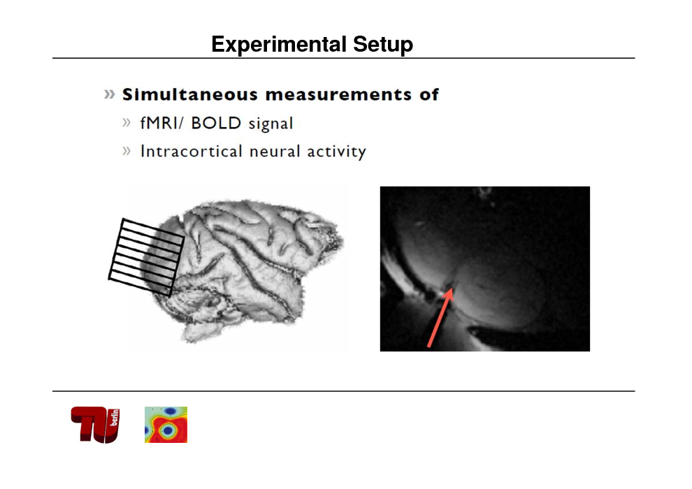 Slide: Experimental Setup