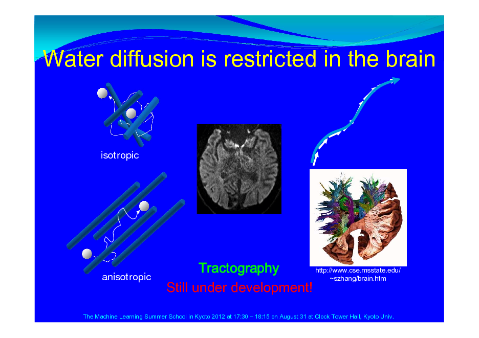 Slide: Water diffusion is restricted in the brain  isotropic  anisotropic  http://www.cse.msstate.edu/ Tractography ~szhang/brain.htm Still under development!  The Machine Learning Summer School in Kyoto 2012 at 17:30  18:15 on August 31 at Clock Tower Hall, Kyoto Univ.