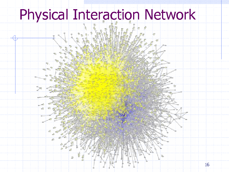 Slide: Physical Interaction Network  16