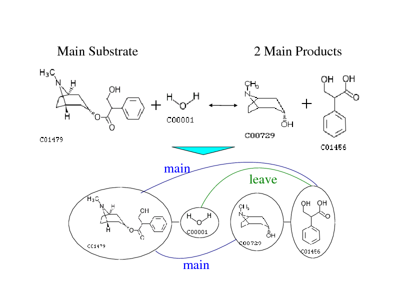 Slide: Main Substrate  2 Main Products      main  leave  main